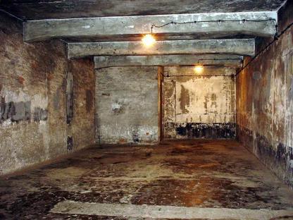 Des douches pour rafra chir les touristes la grosse for Auschwitz chambre a gaz
